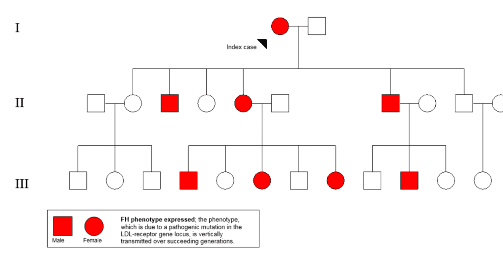 Fig.1. An example of a family pedigree depicting the dominant inheritance of familial hypercholesterolaemia.