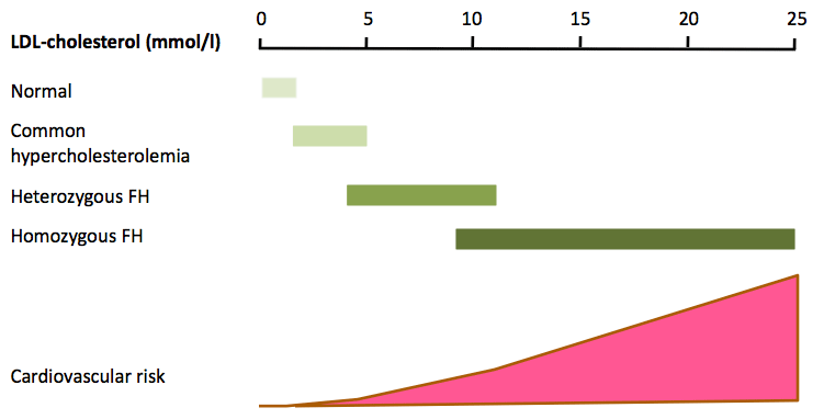 Fig. 2. The spectrum of LDL-cholesterol in familial hypercholesterolemia and the trend in estimated cardiovascular risk (not to scale).